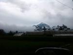 gunung sindoro1
